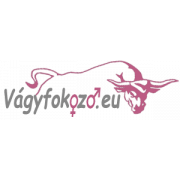 Golden Bridge 2 db potencia növelő kapszula